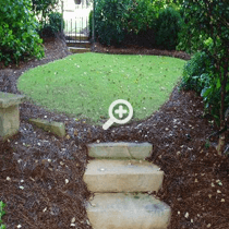 Simply Organic Lawn Treated with Atlanta Organic Lawn Care Products