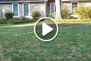 Aeration and Overseeding by Simply Organics Atlanta Organic Lawn Care Professionals