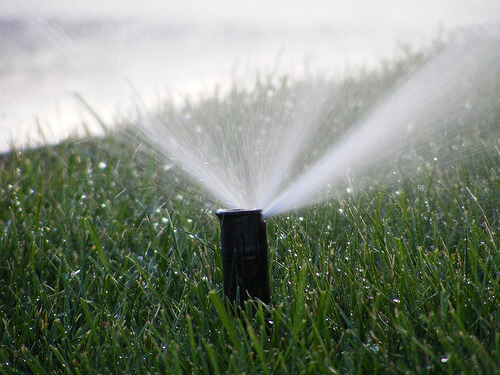 As The Warmer Weather Moves In Your Lawn And Garden Will Require More Water To Stay Healthy Typically All Lawns Need At Least An Inch Of Each Week