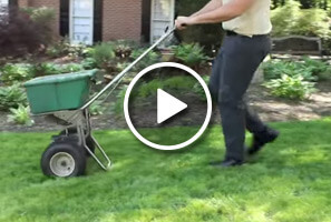 Learn more about Simply Organic's Atlanta Organic Lawn Care Programs