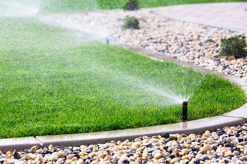 So How Can You Make Sure Your Organic Lawn Reaches Its Full Potential This Growing Season Here Are A Few Spring Maintenance Tasks