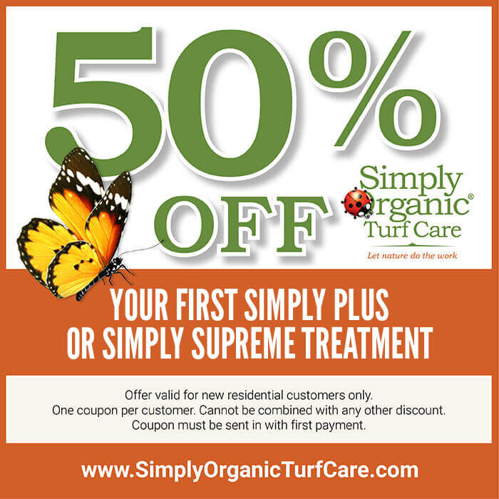 coupon-50-off-first